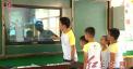 精彩课辅:为孩子打开另一个世界