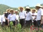 保护开发红色资源 传承弘扬革命精神 市领导赴松毛岭、中复村推动红色资源保护和开发利用