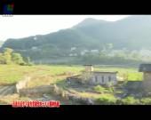 上杭:发展绿色生态经济  引领乡村振兴
