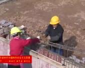 武平:高依山白鹭保护工程有序推进