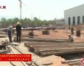 漳平:精准培育 打造百亿木竹产业园