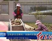 上杭步云云辉村:实施村庄整理 为乡村振兴打基础