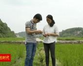 大学生夫妻回乡种粮 甘当新型职业农民