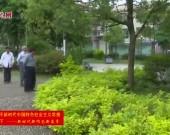 新罗红坊东埔村:实施产业兴村富民工程 建设宜居宜业美丽乡村