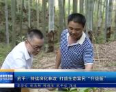 """武平:持續深化林改 打造生態富民""""升級版"""""""