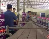 新罗区江山镇:产业造血帮扶 龙头带动脱贫