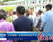 上杭珊瑚:发展特色扶贫产业 拓宽群众增收途径