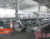 长汀:推动企业转型升级助力纺织产业实现高质量发展