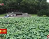 龍巖:煥發紅色新動能 建設綠色生態新龍巖