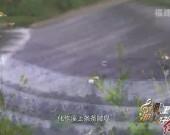 莆田MV925
