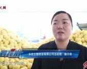 永定:土楼农业来帮忙  滞销蜜柚见曙光