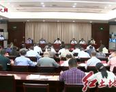 龍巖市召開推進掃黑除惡專項斗爭工作視頻會議