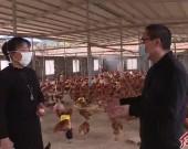 连城:积极落实金融支农政策  真情纾困助脱贫
