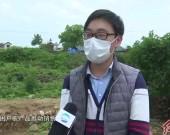 """连城:成立贫困户农产品服务中心 打造""""产销一体化""""扶贫链条"""