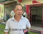 """漳平市南洋镇:""""一片绿叶""""带富了一方百姓"""