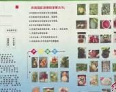 连城新泉:特色瓜果成熟上市 线上线下销售火热