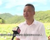 """漳平:做好""""绿""""文章 荒山变宝仓"""