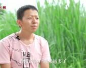 """""""幸福来敲门""""系列微视频:将脱贫的信念传递下去——林村荣脱贫故事"""