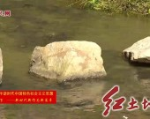 """上杭:深化河湖長制常態化管理 推動""""水清河暢 岸綠景美"""""""