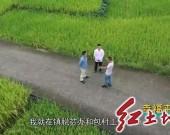 《幸福来敲门》系列微视频之六 《扶贫车间托起幸福生活》——永定区湖雷镇溪口村贫困户沈旺洪