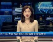 2021年1月3日龙岩市新型冠状病毒肺炎疫情情况