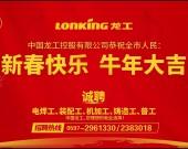 中国龙工控股有限公司