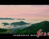 龙岩党史学习教育进行时•系列视频2 《红色圣地龙岩》第一篇章——《红旗跃过汀江》