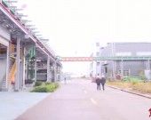 上杭:新材料产业蓬勃发展 2020年实现产值109.3亿元