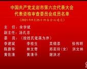 中国共产党龙岩市第六次代表大会代表资格审查委员会成员名单