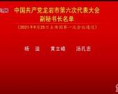 中国共产党龙岩市第六次代表大会副秘书长名单
