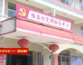"""漳平南洋:沏好党建品牌""""三杯茶""""激活乡村振兴""""强引擎"""""""