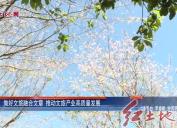 2019年4 月25日新聞直通車