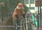 2019年6月02日新闻直通车