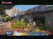 龙岩中心城区:春节临近 年宵花渐入销售旺季