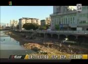 龙津河东岸滨河绿道(东风桥-莲花桥)项目进展顺利