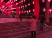 """新罗:传统""""彩灯展""""扮靓城市 成市民游玩好去处"""