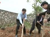 市领导参加义务植树活动