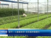 漳平:人勤春来早农民春种春管忙
