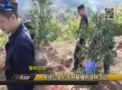 各地公安机关开展植树造林活动