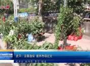 武平:迎春造绿 苗木市场红火