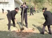 上杭古田:开展义务植树活动 为春日古田再添一片生机
