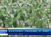 """永定农村信用社:开辟绿色通道""""贷""""动春耕"""