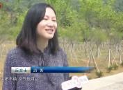 上杭珊瑚乡:打造生态文化旅游胜地 助推乡村振兴战略实施