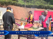 漳平:举办春季水仙茶开采节