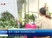 漳平:互联网+ 助力特色花卉销售