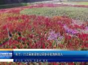 长汀:汀江国家湿地公园多彩花海醉游人