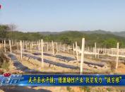"""武平县永平镇:借激励性产业 扶贫发力""""拔穷根"""""""