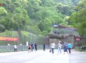 梅花山中国虎园景区:淡季不淡 游客盈门