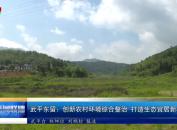 武平东留:创新农村环境综合整治 打造生态宜居新样板