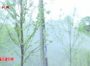 新罗白沙:强化人才支撑 助力乡村振兴